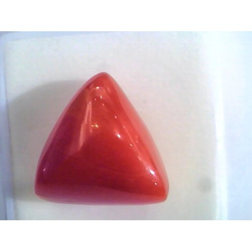 Huge 16.71 Ct Untreated Natural Italian Triangle Red Coral AAA